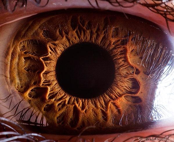 az emberi látás csodálatos