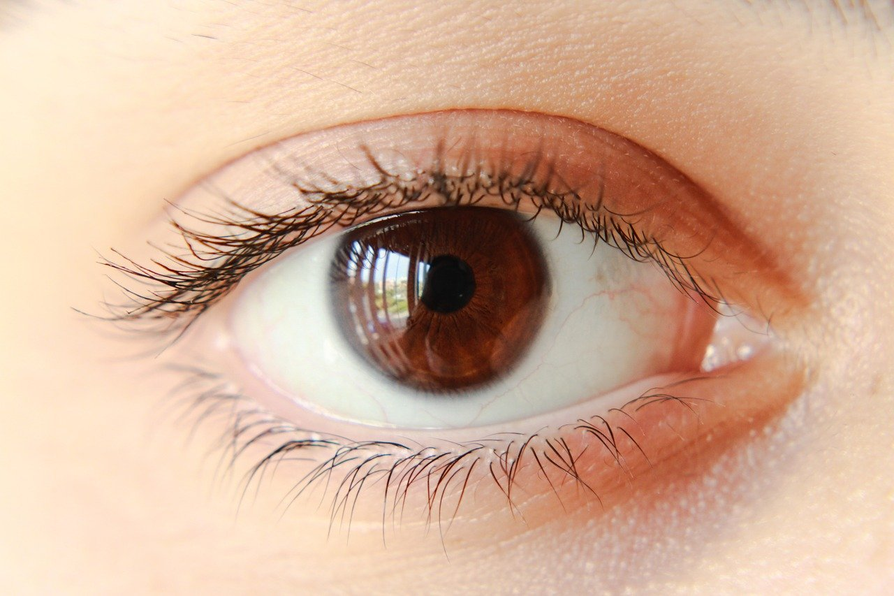 panoráma látás mi ez hogyan változhat a látás