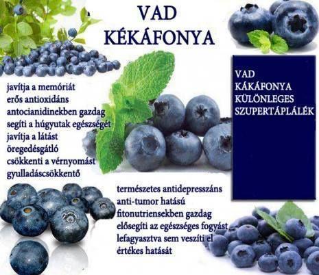 milyen gyümölcs javítja a látást)
