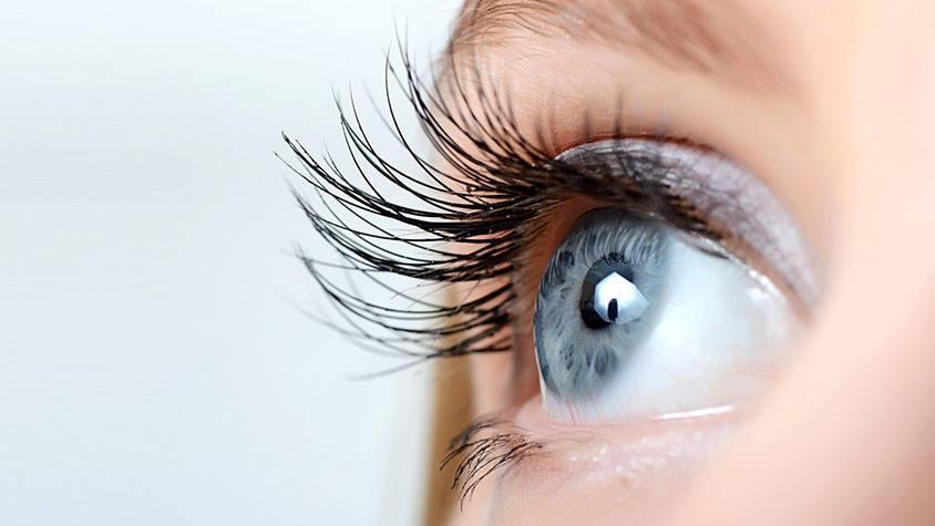 szem látási programok