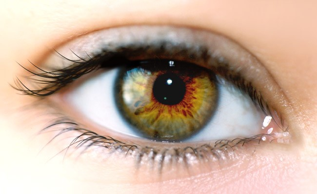 vitaminok a szem látásjavításához
