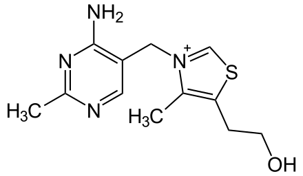 B3 vitamin – niacin   Hatóanyag adatbázis
