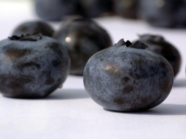 áfonya gyümölcs a látáshoz)