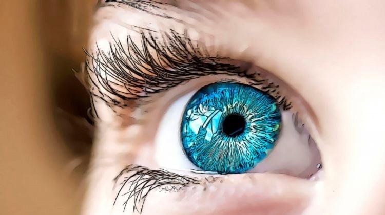 A gyengénlátó szemek gyakorlása. Kiadványok - Magyar Vakok és Gyengénlátók Országos Szövetsége