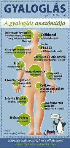perifériás látás az egészségben és a betegségben